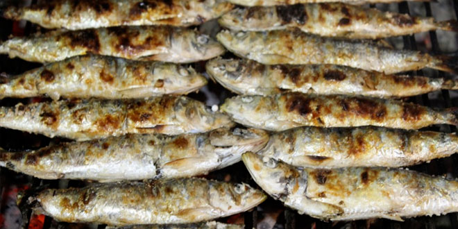 Conheça os benefícios das Sardinhas para a saúde